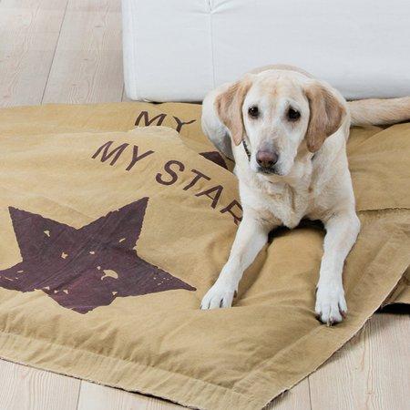 Kissen Haustierkissen ocker burgunderrot mit Stern My Star Gilde