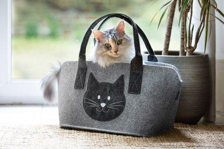 Filz Tasche Katzenkopf Geschenkidee Katzenkorb Umweltfreundlich